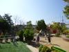 植栽の豊かな園庭(日本).jpg